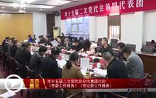 市委书记林先华参加第四代表团和第八代表团讨论