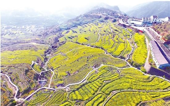 """建百公里""""绿项链"""" 优化全域旅游大环境"""
