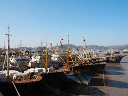 冷空气来袭渔船回港避风 抢时修整做新一轮出海准备