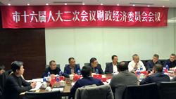 市十六届人大二次会议召开财政经济委员会会议