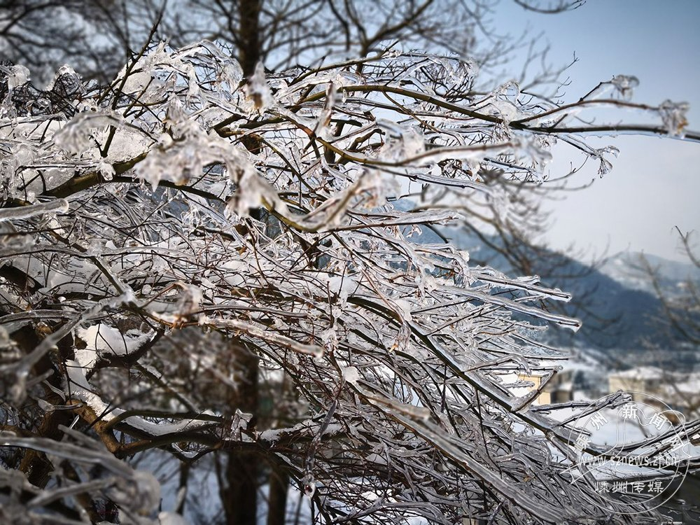 四明山现冰挂景观 美不胜收
