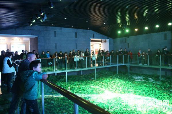 县城市展览馆:春节不闭馆,欢度和美畲乡年
