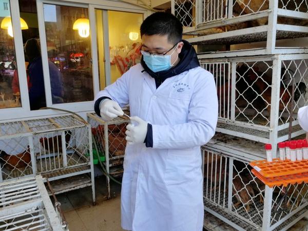 保健康保平安 玉环疾控节后禽流感病毒监测忙