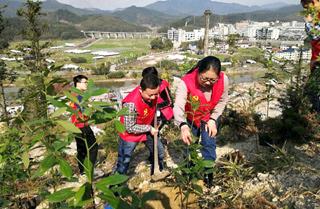 党员干部开展植树活动