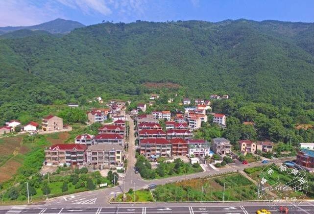 王树村党建引领美丽乡村建设