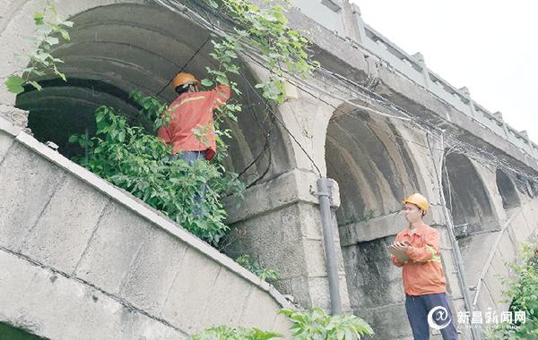 新昌启动四座桥梁检测项目