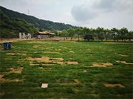 惊艳!温岭古村复活了一项具有千年历史的运动