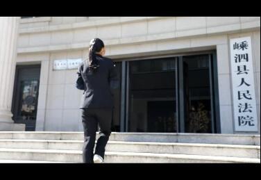 平安嵊泗:诉讼服务 德法同行