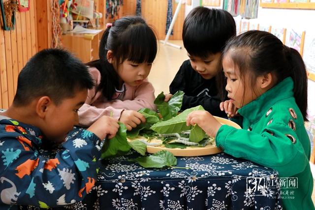 吴兴东林镇:孩子们体验养蚕乐趣