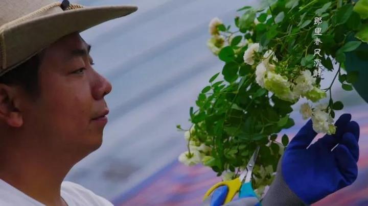 """丽水这个""""种玫瑰""""的男人 与妻子打造美丽花园"""