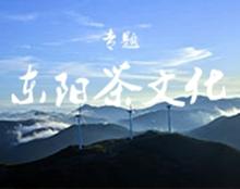 【专题】2018东阳茶文化推广专题