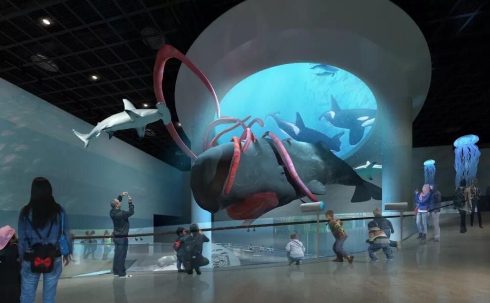 全球独一无二的抹香鲸巨型模型来到安吉