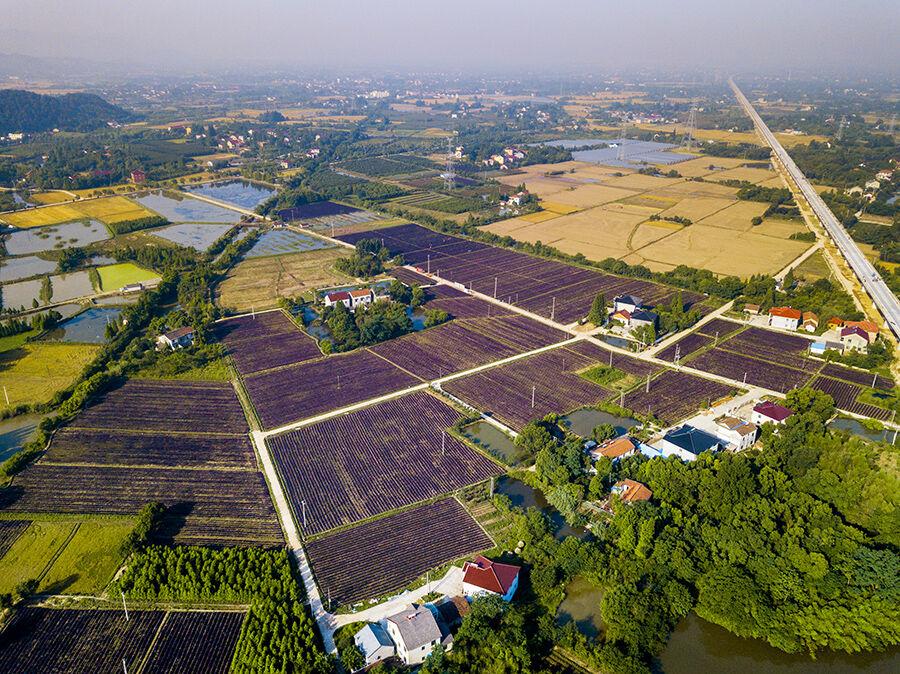 和平镇有多少人口_小河口商周时期遗址 和平镇