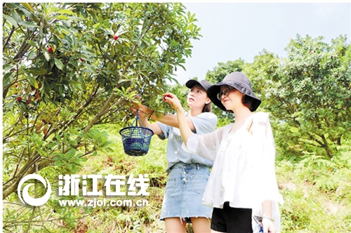 吴兴:精品果园迎客来