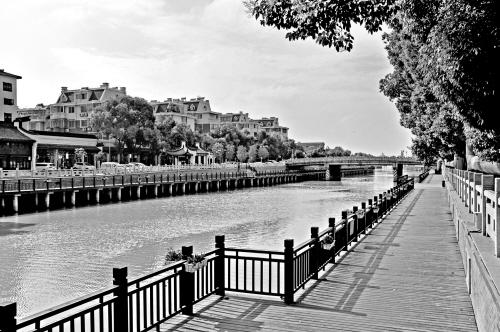 崇福市河更美了