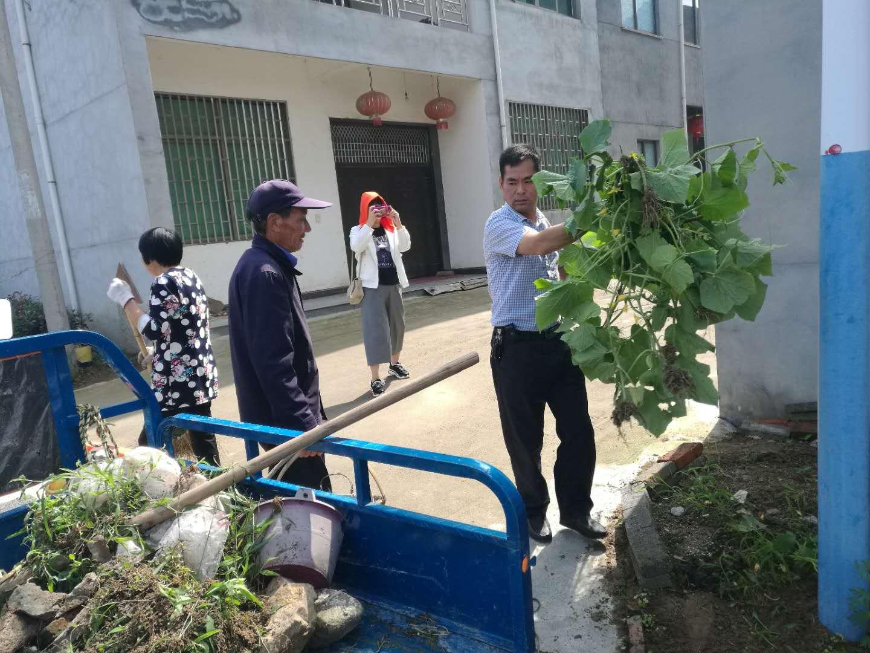 金庭镇高龙村积极创建环境整治示范村