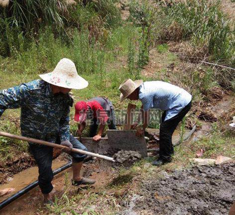 青坑岙村干部群众设抽水机、铺设引水管