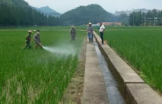 指导农户病虫害防治工作