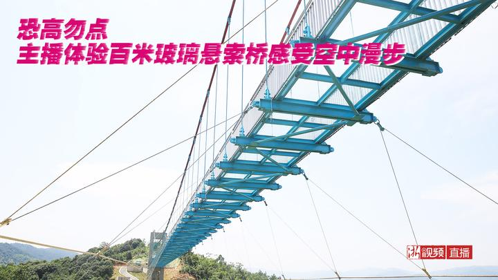 直播预告 恐高勿点 主播体验百米玻璃悬索桥感受空中漫步