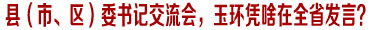 县(市、区)委书记交流会,玉环凭啥在全省发言?