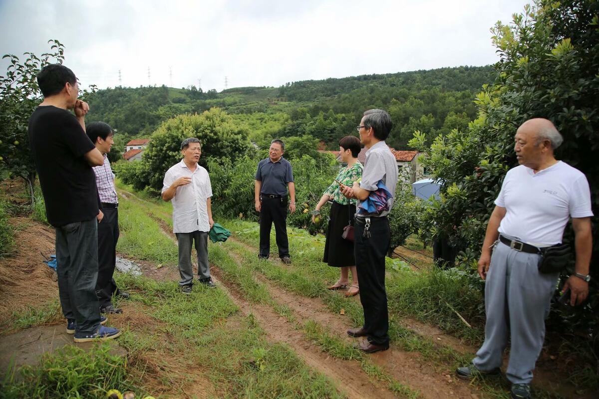 市关工委科技帮扶团专家赴果木发展基地开展科技帮扶活动