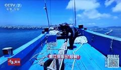 """嵊泗""""贻贝""""登录央视七套《食尚大转盘》"""