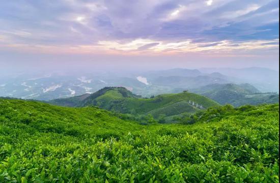 探寻豫南明珠――西九华山的魅力之旅