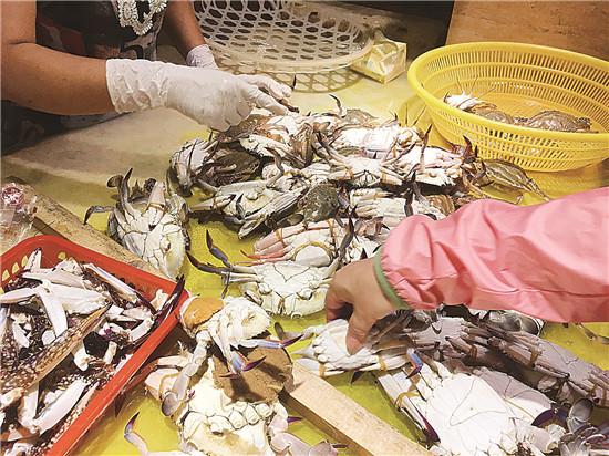 违法!捕售抱卵梭子蟹 执法部门联合检查