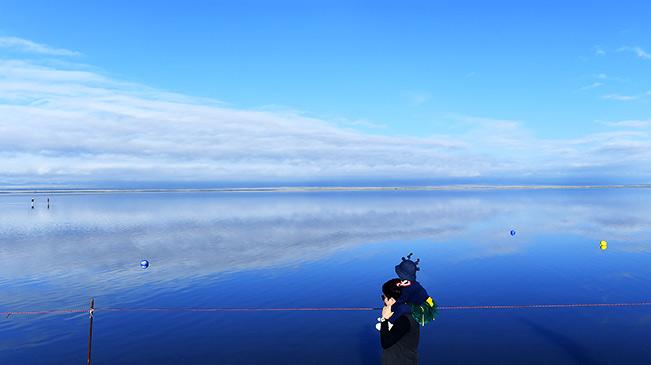 """天空之镜""""――茶卡盐湖"""