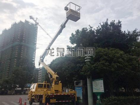 市建设局亮化办对剑川大道和华楼街十字路口的故障路灯电缆进行维修更换