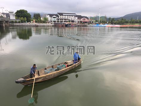 工作人员及时清理龙泉溪水面漂浮物以保持水面清洁