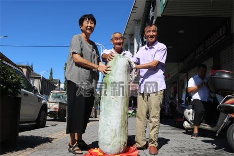 一市民种出152斤的大冬瓜