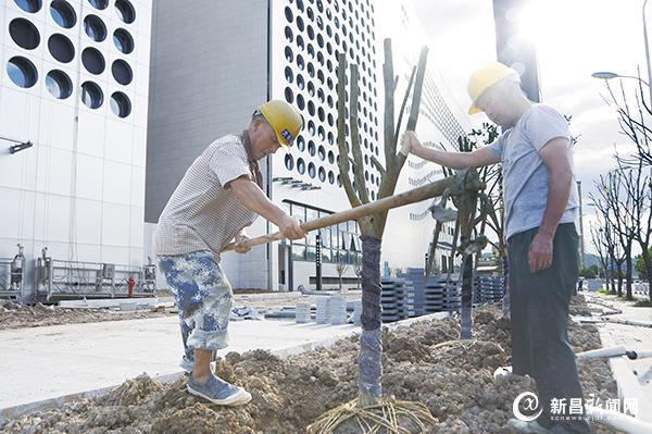 社会公共服务大楼建设接近尾声