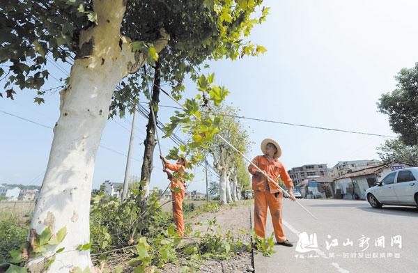 修剪行道树