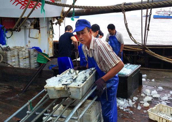玉环:科学捕鱼获丰收