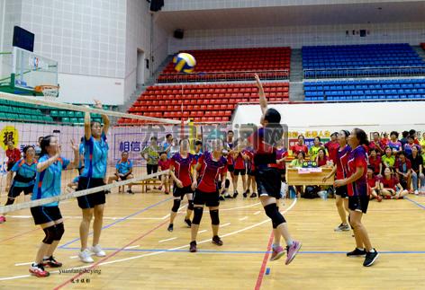 """2018龙泉市""""农信杯""""气排球比赛在市体育馆举行"""