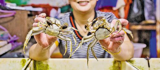 安吉:大闸蟹美味上市