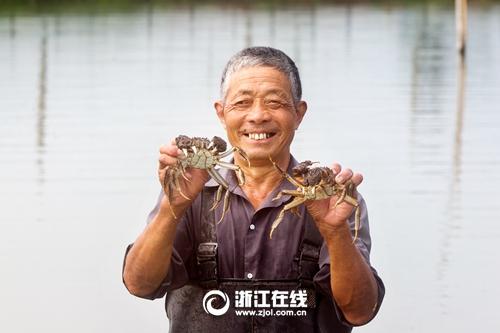 """长兴:两万亩太湖大闸蟹抢""""鲜""""上市"""