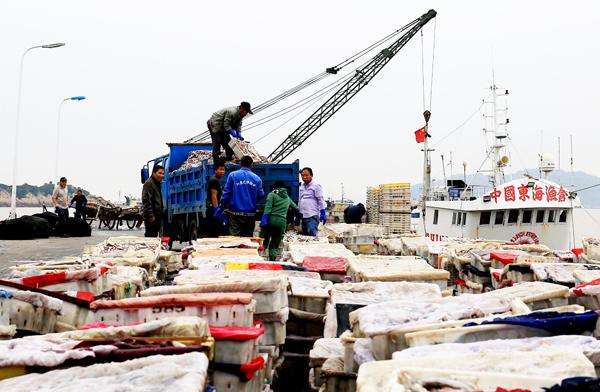 玉环渔船进港 带回大量海鲜