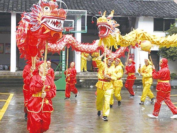 谷来镇第七届香榧文化节举行