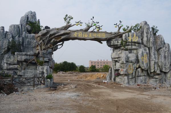 """300株玉环文旦树""""入住""""柚博园预计11月19日开园迎客"""
