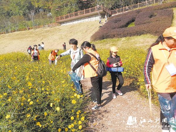 美化江城环境
