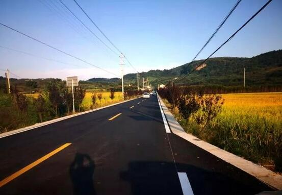 嵊州王院乡建设美丽公路激活美丽经济