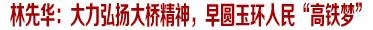 """林先华实地调研高铁项目工作 强调:大力弘扬大桥精神,早圆玉环人民""""高铁梦"""""""