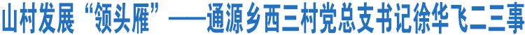"""山村发展""""领头雁""""――通源乡西三村党总支书记徐华飞二三事"""