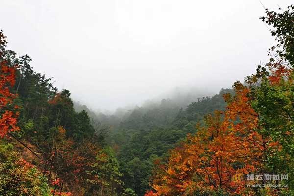 烟雨朦胧持续 冷暖气流博弈往往会出现这种天气