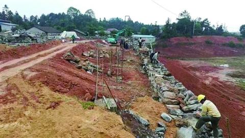 龙旺家庭农场二期项目快推进