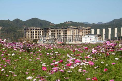 查田镇加大小城镇环境综合整治力度 宜居宜业的美丽画卷逐渐铺展