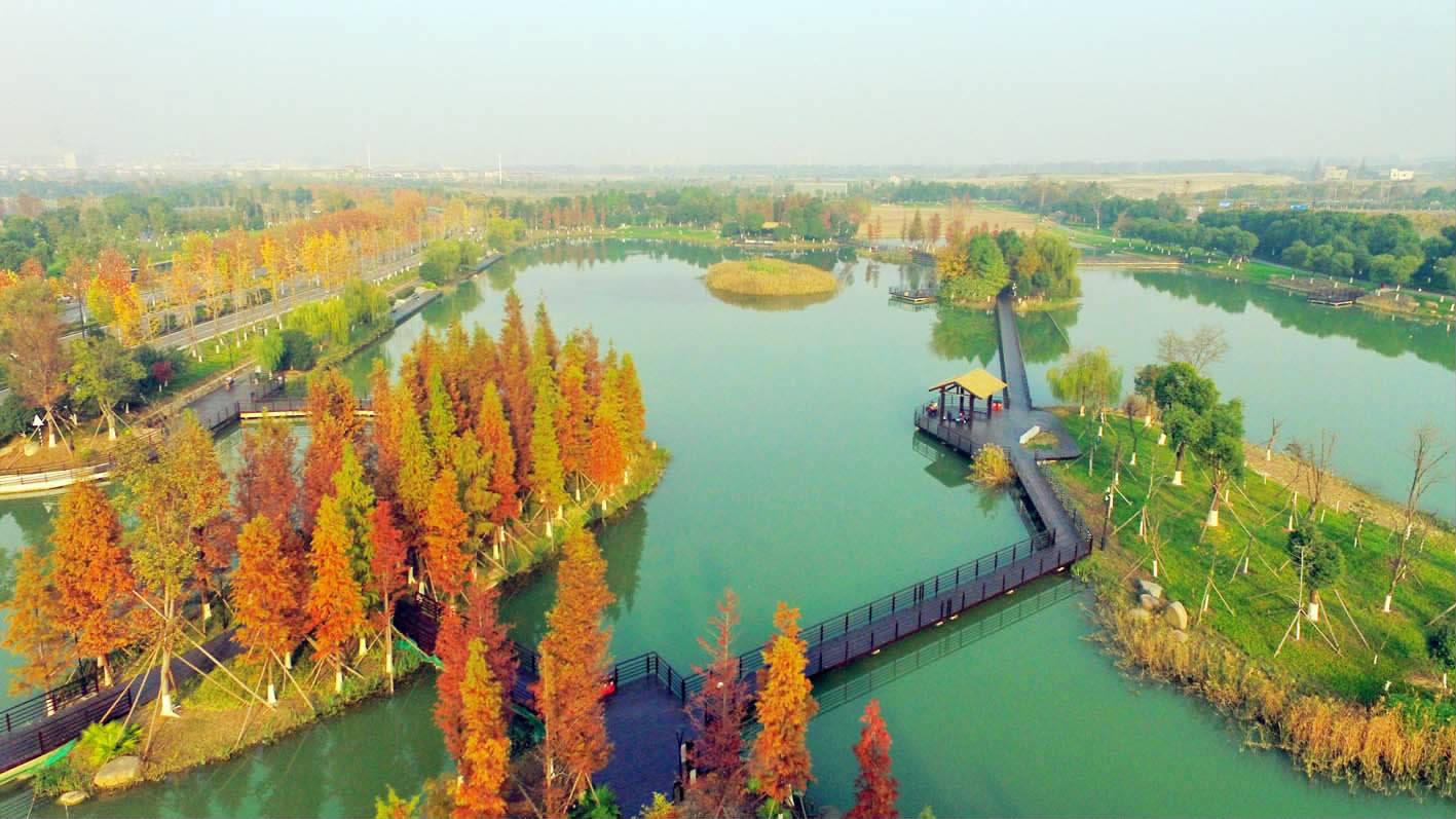 凤凰湖湿地美如画