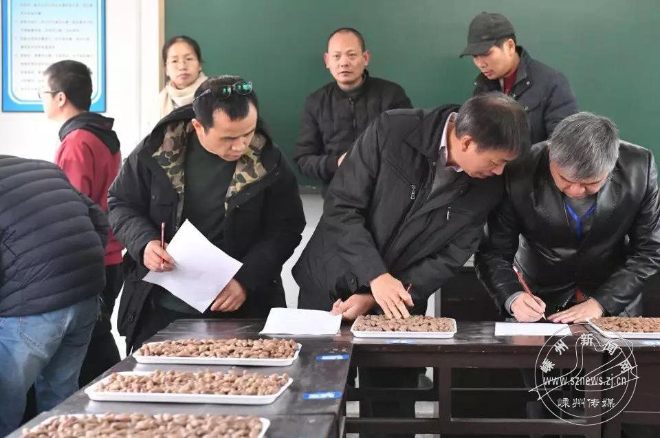 首届香榧生籽质量管理评比